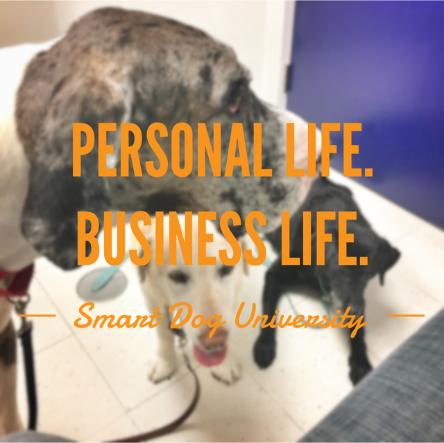 Personal Life. Business Life. It All Blends Together Sometimes.